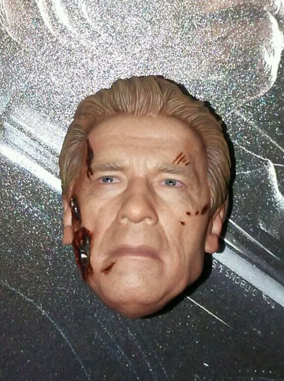 1/6 Hot Toys Terminator Damaged Head MMS307 US Seller