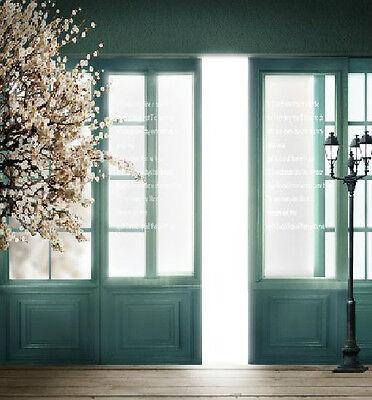 5x7ft Door Floor Vinyl Photography Gallery Studio Backdrops Wedding Backgrounds