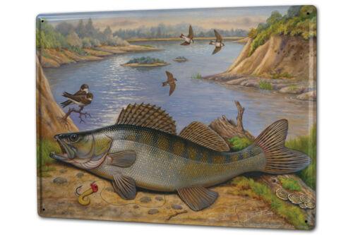 Tôle plaque xxl anglerheim rivière perche sport pêcher en mer