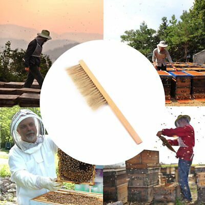 "Beekeeping Tool Equipment VIVO 16/"" Natural Horse Hair Bee Hive Brush"