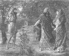 ELIJAH AHAB & JEZEBEL in NABOTH VINEYARD ~ Old 1880 BIBLE Art Print Engraving