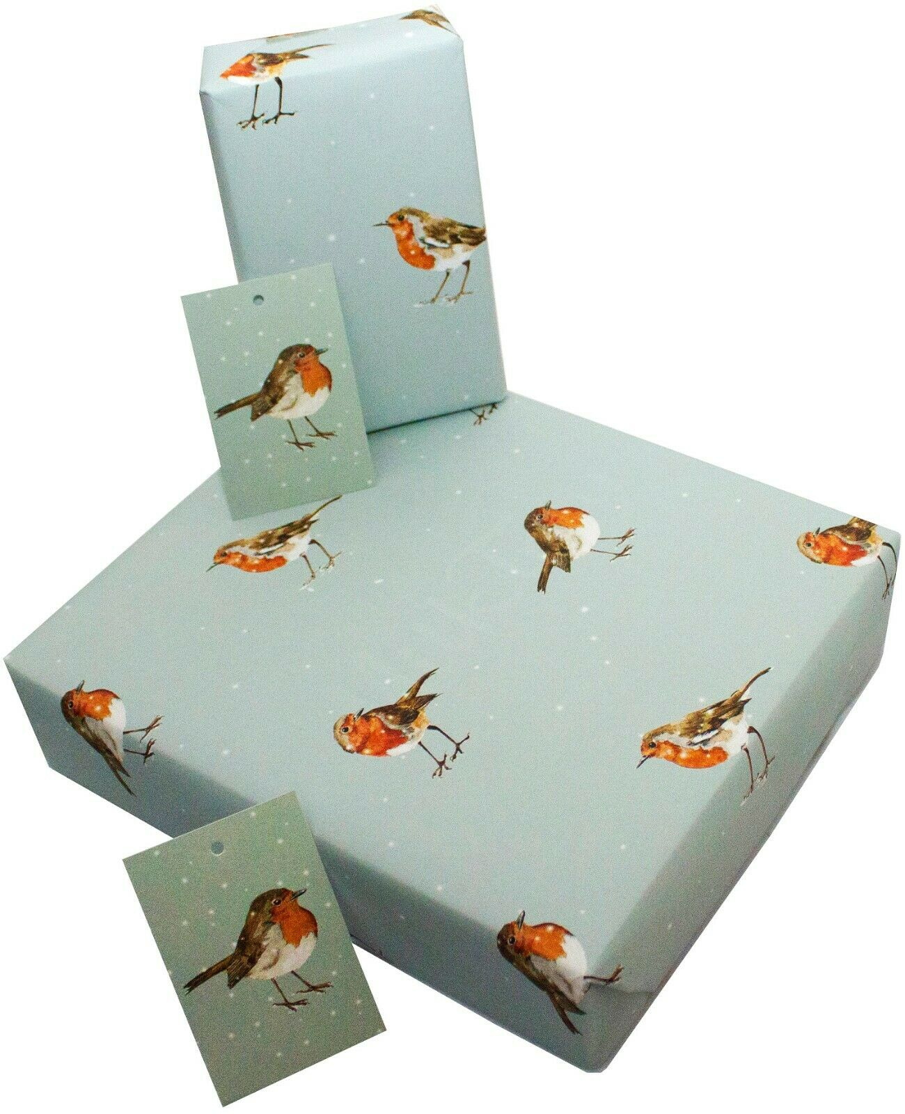 2 TAGS ANY OCCASION 1STP/&P EDEN FLORAL  2 SHEETS OF GIFT WRAP WRAPPING PAPER