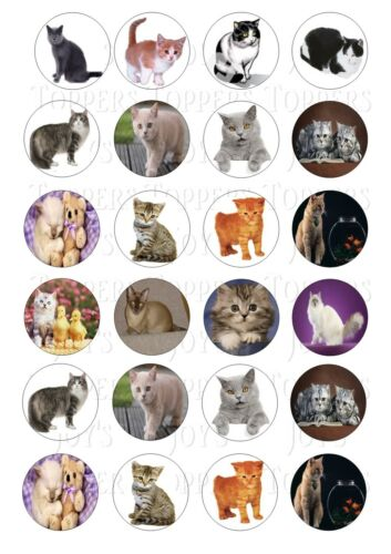 24 CAT CATS CUPCAKE TOPPERS ICED ICING FAIRY CAKE BUN TOPPERS