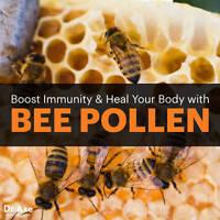 Bee Pollen Abexine 500 Mg Immune Support Bee Therapy Arthritis Army Alga Abee