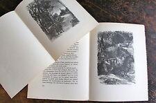 MAHN BERTHOLD, Le feu d'Henri Barbusse, lithographies de Berthold Mahn, souscrip