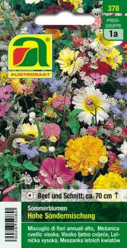 Hohe Sondermischung Sommerblumen