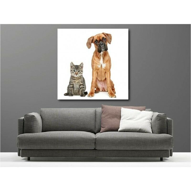 Canvas Fabric Deco Square Dog and Cat 69203530