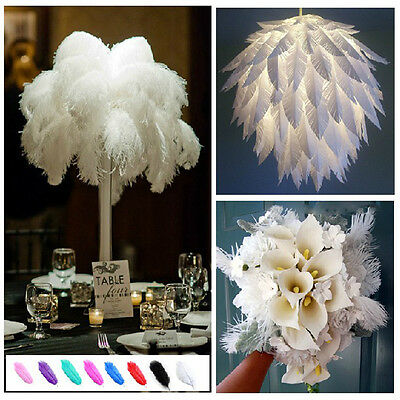 "6-26""Natural Ostrich Feather Wedding Party Home Art Show Decor Plumes d'autruche"