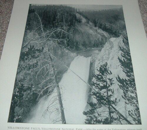 1892 Antique Print YELLOWSTONE FALLS YELLOWSTONE NATIONAL PARK Great Falls