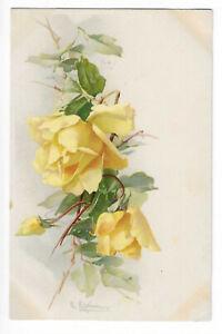 Illustration Signed Catharina Klein Blossom Flower