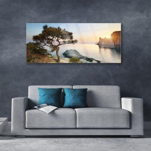 Acrylglasbilder Wandbilder Druck 125x50 See Baum Landschaft