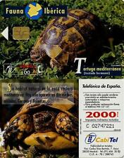 2000 + 100 PTA. Fauna Ibérica. Tortuga mediterránea (testudo hermanni). CabiTel.