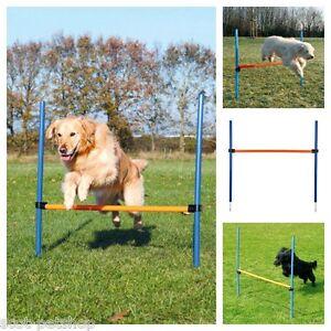 Dog-Agility-Hurdle-Choice-Of-Quantity-For-Dogs-Agility-Training