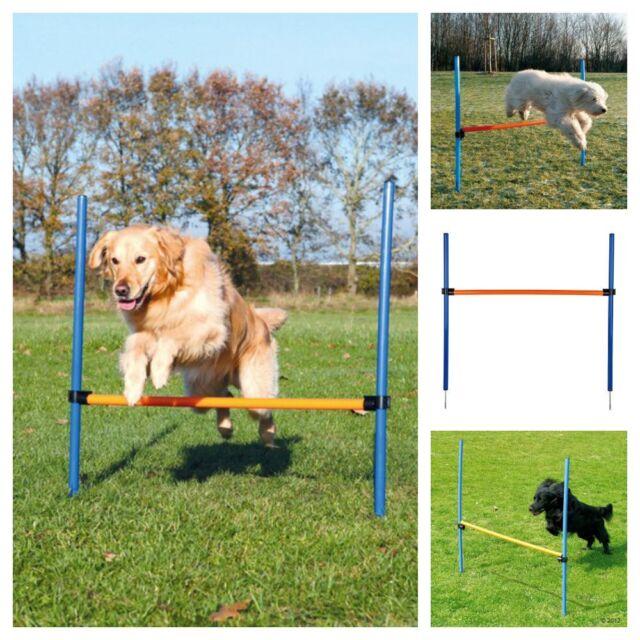 Dog Agility Hurdle | Choice Of Quantity For Dogs Agility Training