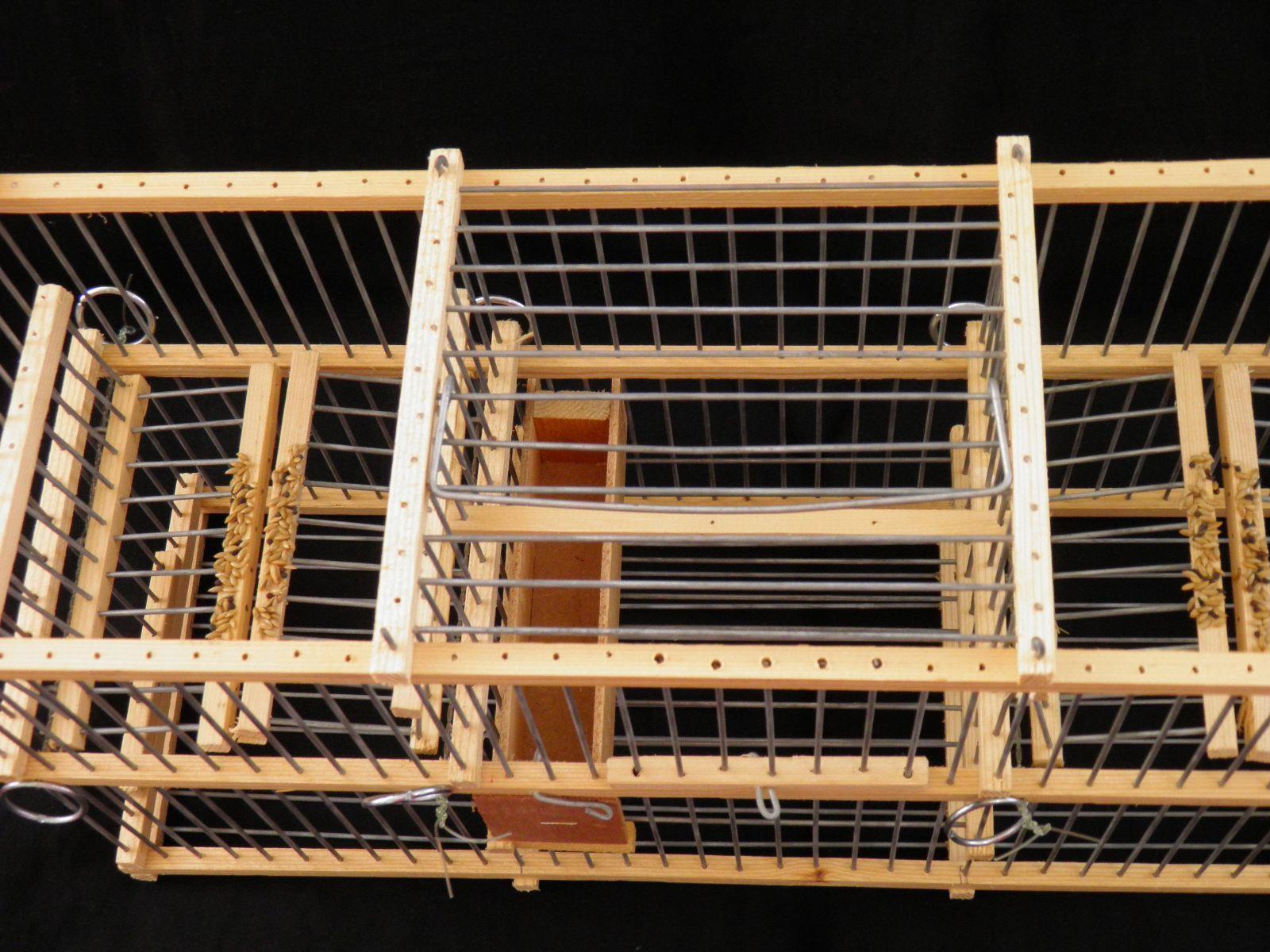 Piège ratrappage       Cage à Balance trébuchet Multi-Reprise à deux Blocs trappes d3ced8