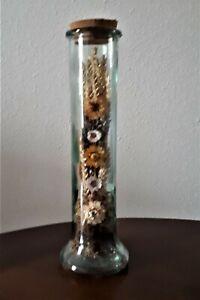 Bouquet de fleurs séchées dans un vase longiligne