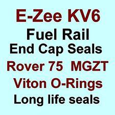 A* BEST KV6 Fuel Rail End Cap Seals Kit VITON O Rings for Rover 75 & MG ZT V6