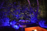 BlissLights Outdoor Indoor Spright Smart Firefly Light with Timer RED QVC $121