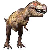 Sticker Dinosaure T-rex T-rex