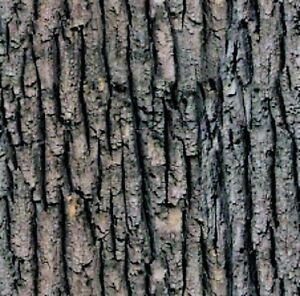 HYDROGRAPHIC WATER TRANSFER HYDRODIPPING FILM HYDRO DIP TREE BARK #2 1SQ