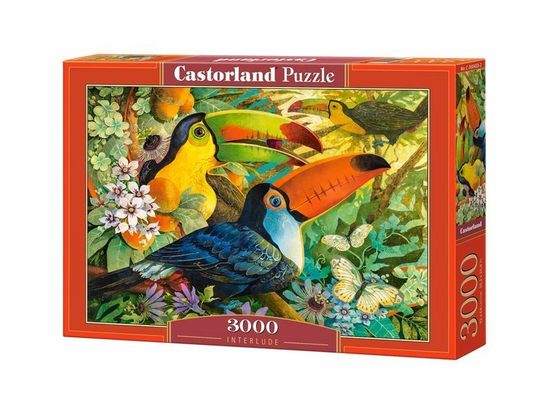 Castorland Puzzle 3000 Pieces - Interlude 92x68cm / 36 x27  Sealed box C-300433