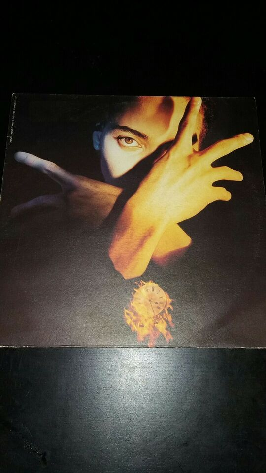LP, Terence Trent D'Arby, Neither fish nor flesh