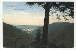 AK-Bad-Harzburg-Blick-vom-Baerenstein-Burgberg-1921