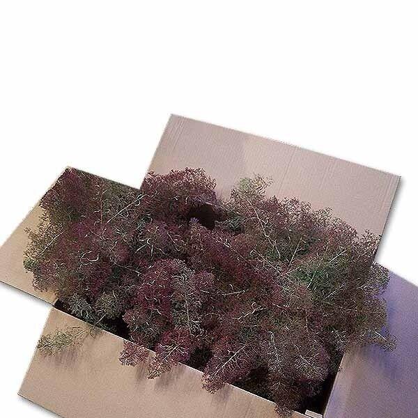 (  m³) Seemoos natur große Kiste, ca. 58 x 38 x 39 cm Naturmaterial