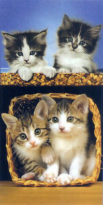 Serviette-de-plage-Drap-de-bain-Chats-chatons-dans-panier-beach-towel-coton