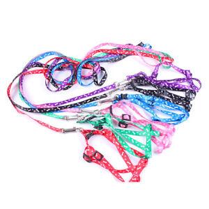 1X-Pet-Dog-Puppy-Cat-Kitty-Nylon-Harness-Leash-Lead-Embroidery-J6O3