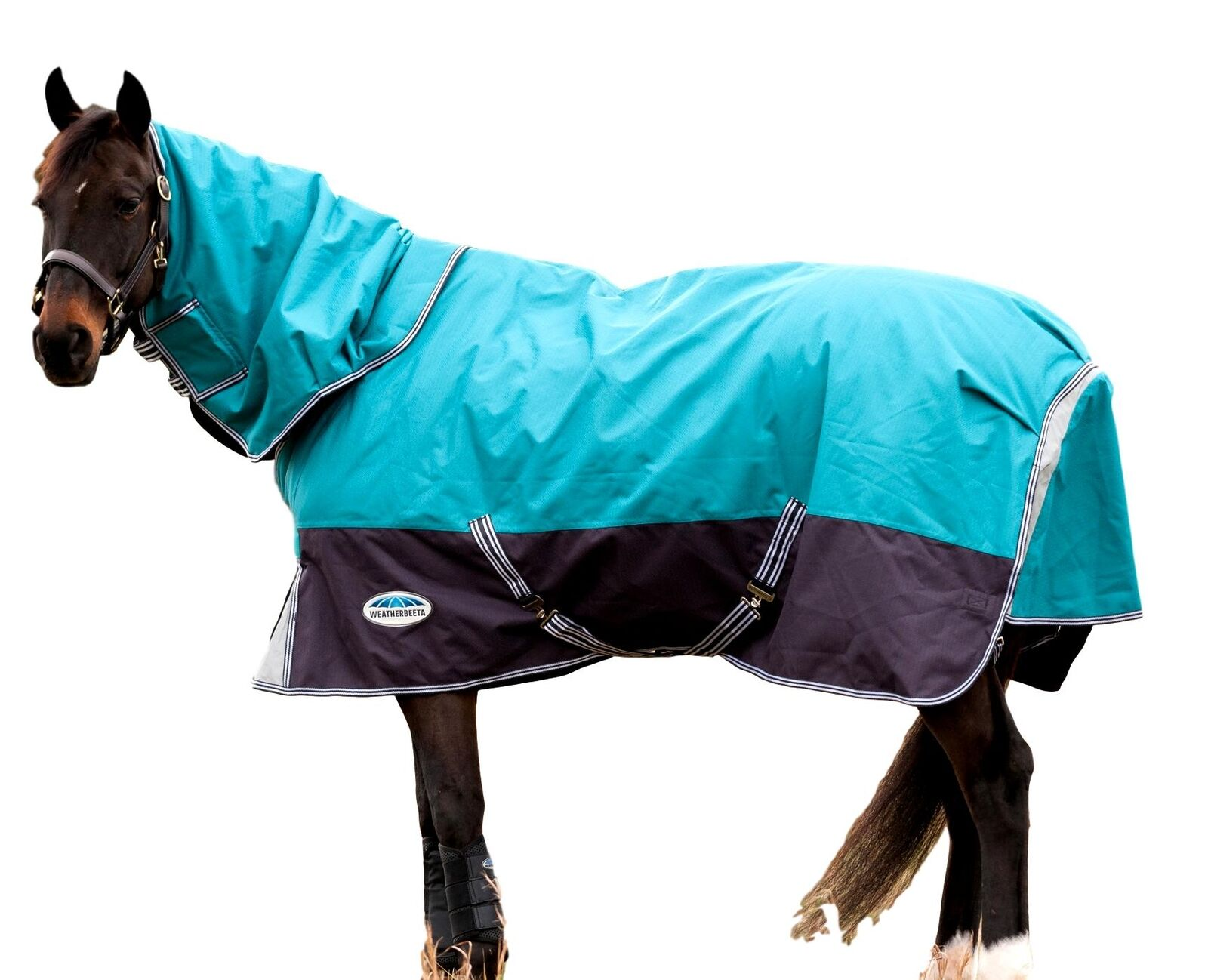 Weatherbeeta Comfitec Premier gratuito DetachANeck Medium Turnout Blanket