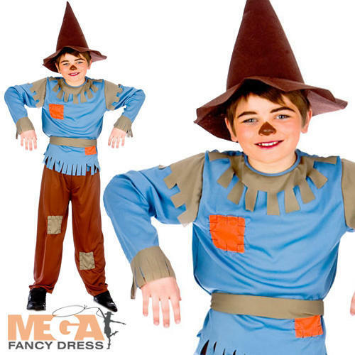 Hat Boys Fancy Dress Childs Book Week Character Kids Costume Outfit Scarecrow