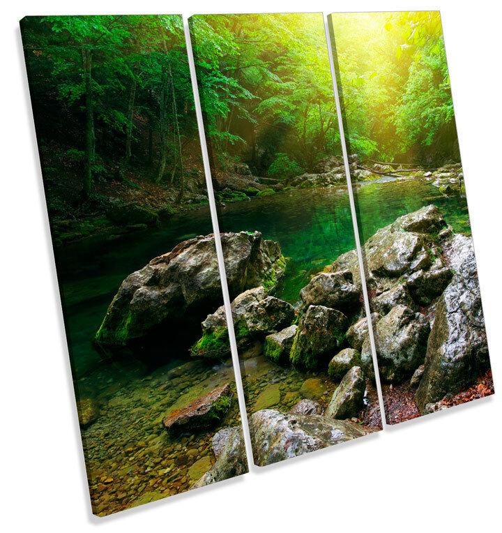 Mountain River Forest Landscape TREBLE CANVAS WALL ART Square Print Picture
