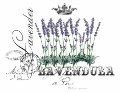 Vintage French Advertising Lavender Furniture Transfers Waterslide Decals FL556