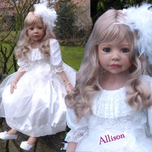 Pantaloons /& Shoes Dress Masterpiece Dolls Allison Outfit Hairpiece Includes