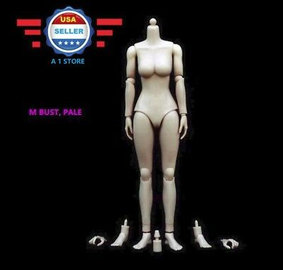 1//6 Scale Female Nude Figure Body Doll Medium Bust Pale Skin Tone