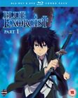 Blue Exorcist - Part 1 (Blu-ray and DVD Combo, 2013, 5-Disc Set)
