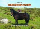 Spirit of Dartmoor Ponies by Dartmoor Pony Society (Hardback, 2009)