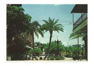 Y-039-BOR-CITY-TAMPA-FL-Vintage-Park-View-Ybor-Postcard