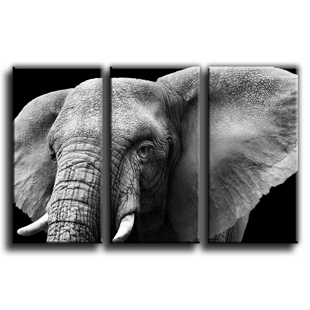 Elephant Canvas Print Wall Art Treble Picture 15 Gallery Größe Größe Größe pre 5413b3