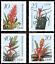 miniature 1 - EBS-East-Germany-DDR-1988-Flowers-Bromeliads-Michel-3149-3152-MNH