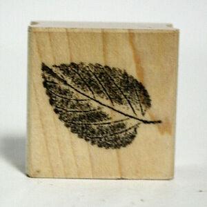 2007-Hero-Arts-Stamp-Scrapbooking-PaperCrafts-Single-Leaf-Smudged-Rubber-B4941