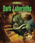 Dark Labyrinths by Michael E Goodman (Hardback, 2010)