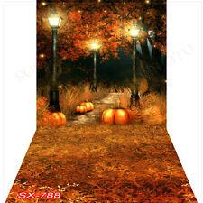 Halloween10'x20'Computer/Digital Vinyl Scenic Photo Backdrop Background SX788B88