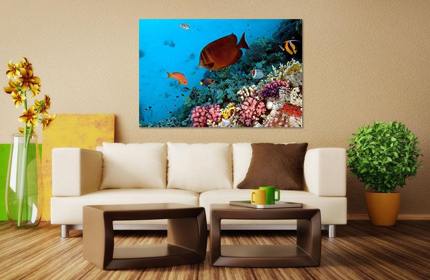 3D Meeresgrund Snapper 3 Fototapeten Wandbild BildTapete Familie AJSTORE DE