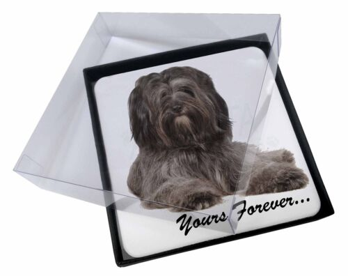 4x Tibetan Terrier 'Yours Forever' Picture Table Coasters Set in Gift, ADTT2yC