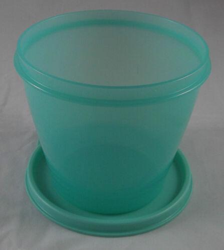 Tupperware Frischebehälter Frische Behälter Dose Box 800 ml Mint Grün Neu OVP