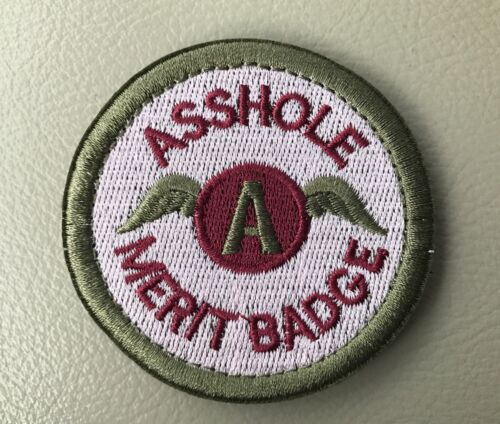 """A**HOLE MERIT BADGE TACTICAL COMBAT 2.5/"""" EMBROIDER HOOK LOOP MORALE PATCH Silver"""