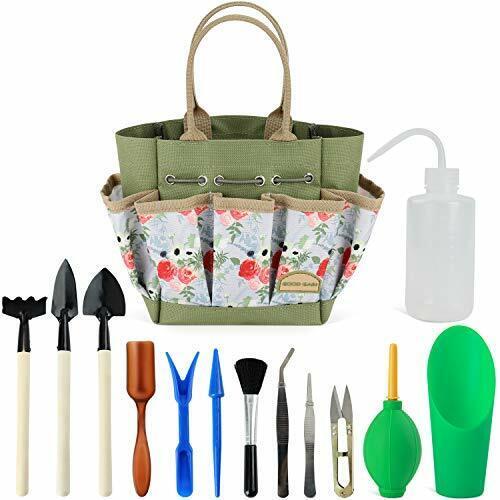 Indoor Mini Hand Gardening Good GAIN Garden Succulent Kit with Organizer Bag