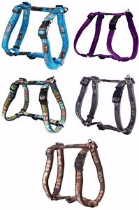 Rogz-Fancy-Dress-Adjustable-Nylon-Dog-Harnesses-Lots-Of-Colours-And-Sizes